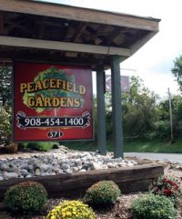 Peacefield Gardens