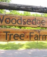 Woodsedge Tree Farm