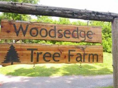 Woodsedge Tree Farm
